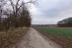 Im Dünbach-Tal