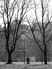 Herbst (jannebaer) Tags: herbst autumn fall spaziergang baum tree pedestrian kalt cold frth