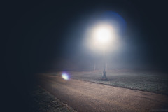 Lamp under the fog (michaelraleigh) Tags: lamp bokeh secluded f28l serene infocus fog albertlea outdoors 2035mm canon highquality canoneos5dmarkii minnesota