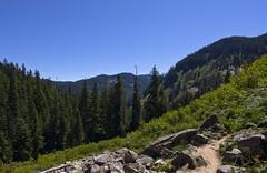 Exploring the Alpine Wilderness (s.d.sea) Tags: summer mountains nature creek forest landscape washington pentax july hike trail alpine cascades wilderness denny pnw k5ii
