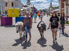 Two girls two ponies (memfisnet) Tags: street travel girls holiday russia olympus ponies kolomna thekolomnakremlin