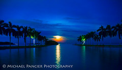 Bad Moon Rising (Michael Pancier Photography) Tags: ocean sea outdoors us unitedstates florida miami luna fullmoon palmtrees moonrise biscaynebay travelphotography commercialphotography naturephotographer editorialphotography deeringestate miamidadecounty michaelpancierphotography landscapephotographer fineartphotographer michaelapancier miamidadecountyparks wwwmichaelpancierphotographycom supermoon2015