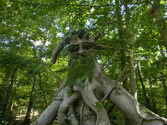 Ent Man 2015 (jakyle8701) Tags: wild man tree art statue yard garden diy backyard unique ideas coolest ent treebeard hypertufa