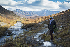 DSC_4920-Edit (K&J_2184) Tags: bear autumn trees alaska river nationalpark greg sheep kim jill hiking moose september grizzly denali fairbanks dall