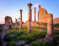 Basilica and Temple of Saturn Volubilis ancient roman remains Morocco (seanburke96) Tags: africa history ancienthistory ancient time roman northafrica north exotic morocco empire late excursions romanempire basilicas lateroman