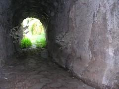 DSCN8905