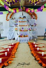 El Camino Cbta19 (Sayula Jalisco) Tags: sayula