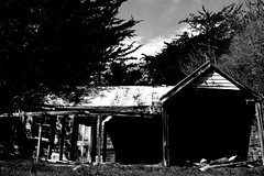 Rural Life (duck vs. chicken) Tags: ranch newzealand christchurch abandoned home field rural cabin alone box farm empty rustic neglected cottage shed meadow lodge hut forgotten shack aged shelter acres grassland deserted dumped outland unoccupied exhuasted abandonedchristchurch