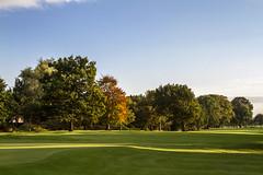 OGC - landscape (dareangel_2000) Tags: autumn trees light shadow green fall leaves club golf landscape belfast golfcourse northernireland magichour goldenhour ormeau leaffall ormeaugolfclub dariacasement
