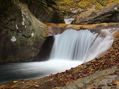 Nishizawa ravine (elminium) Tags: mountain water japan forest waterfall stream ravine yamanashi coloredleaves dmcg1
