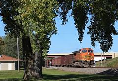 The Tree Frame (GLC 392) Tags: shadow tree green grass minnesota electric train general framed 9 dash newport ge herzog mn bnsf ballast 4198 c449w