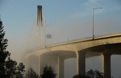 Port Mann Bridge (Ian Threlkeld) Tags: bridge nikon britishcolumbia bridges coquitlam nikonphotos beautifulbc portmannbridge nikonphotography d7000 mynikonlife
