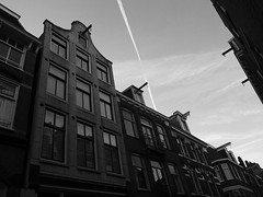 Amsterdam (Lamevagaleria) Tags: forest amsterdam pintoresco hojas autum viaje holanda netherlands eindhoven aeropuerto bicicletas holidays holiday olympus e30