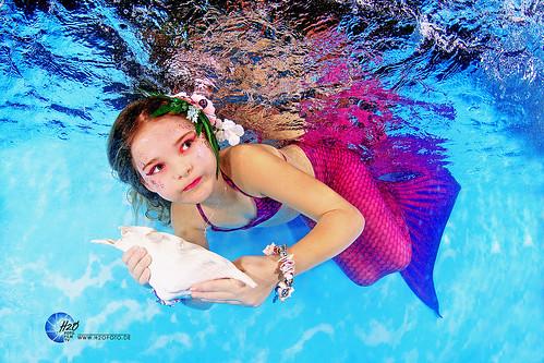 schwimmkurse dresden kinder