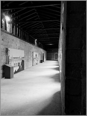 De bois et de pierres (stephphoto8184) Tags: noir pierre des palais et avignon blanc bois papes patrimoine