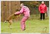 First Von King Von Backdraft RINALDI V  -0898 (Fab Photos Canine et Sportive) Tags: king von first backdraft