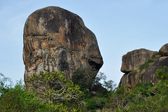 Yala - Rock Formations (Drriss & Marrionn) Tags: travel rock forest asia outdoor wetlands srilanka ceylon uva grasslands rockformation southasia yalanationalpark metamorphicrock monsoonforest uvaprovince
