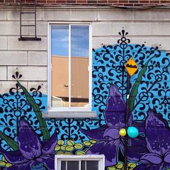 wall garden (placeinsun) Tags: autumn houses windows streetart architecture balloons graffiti montral ruelle