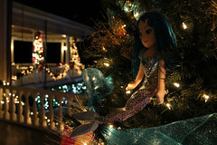 Enchantment (Flint Foto Factory) Tags: christmas city winter urban holiday home beautiful florida bokeh fort twinkle burroughs veranda porch ft intersection mermaid built enchanted myers 2505 1901 2015 nationalregisterofhistoricplaces 1stst enchantress fowlerave