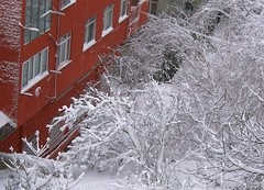 Turkey (Istanbul) Snow view from my window (ustung) Tags: red house snow turkey landscape view kodak outdoor istanbul snowing cityview