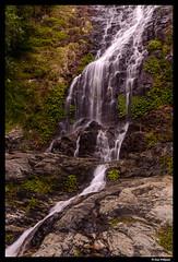 Water flowing in Dorrigo (Dan Wiklund) Tags: australia nsw dorrigo nationalpark waterfall water rock d800 2016