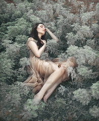 Don't Wake the Dreamer (Michelle.A.M.) Tags: free people altered dream dreamer woodland faerie series storytelling conceptual fine art model brunette long hair embroidered sheer sleep peaceful serene whimsical mysterious butterfly graceful elegant dainty silver ethereal