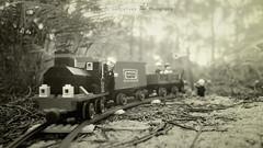 Through the forest (Ricardo Jos Gonalves) Tags: legotrain181 train macrodreams forest ricardogonalves closeuplens lego
