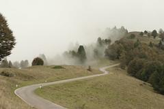Motorradherbst (zahn-i) Tags: herbst autumn wolken bume strase road roadsliketheese mist fog nebel berg wald wiese alps alpen mountain trees orange green gold