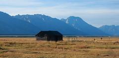 Log Cabin and Grand Tetons, Mormon Row - Grand Teton National Park, Wyoming (danjdavis) Tags: mormonrow grandtetonsnationalpark nationalpark oldhouse historichouse wyoming logcabin cabin grandtetons rockymountains mountains grassland
