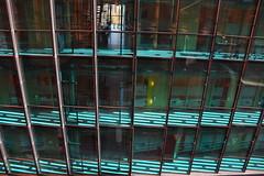 Zebra Architecture (jacques_teller) Tags: amsterdam netherlands conservatorium music shades green nikond7200 jacquesteller fritsvandongen daylight sunlit paysbas urbain architecture