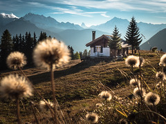 dreamland (zedipedi) Tags: aletsch switzerland valais wallis autumn matterhorn alps mountain colorful catchycolors flowers chalet panorama beautiful