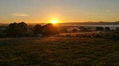 5am Gloucestershire Foggy Sunrise (dominicmeason) Tags: withington gloucestershire upcote farm camping cheltenham sunrise fog mist misty england uk countryside nature wonderlust campsite huawei p9 huaweip9 sun morning early