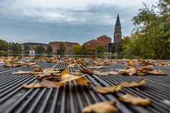 Oh, autum. Here you are. (LeonByTheSea) Tags: leaves autum water day kiel townhall lowangle