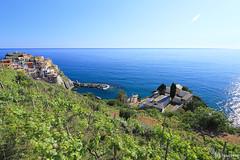 Manarola, Cinque Terre (tomosang R32m) Tags: cinqueterre liguria laspezia manarola night blue