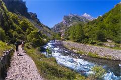 Rio Cares (PrimiFer) Tags: rio cares river montaa mountain picos de europa cantabria asturias espaa spain senderismo montaismo nikon d80 peleng 8mm trekking