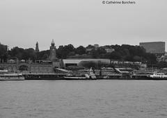 Hamburg (Cathrine1) Tags: hamburg stadt hanse stpauli town water wasser elbe flus river skyline schwarz weis black white