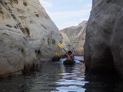 hidden-canyon-kayak-lake-powell-page-arizona-southwest-IMGP6501 (lakepowellhiddencanyonkayak) Tags: kayaking arizona southwest kayakinglakepowell lakepowellkayak paddling hiddencanyonkayak hiddencanyon slotcanyon kayak lakepowell glencanyon page utah glencanyonnationalrecreationarea watersport guidedtour kayakingtour seakayakingtour seakayakinglakepowell arizonahiking arizonakayaking utahhiking utahkayaking recreationarea nationalmonument coloradoriver halfdaytrip lonerockcanyon craiglittle nickmessing lakepowellkayaktours boattourlakepowell campingonlakepowellcanyonkayakaz lonerock