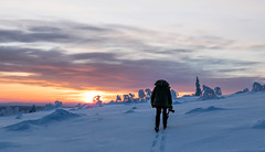 Photographer in lappland ( Mathieu Pierre photography) Tags: lappland laponie finnland lapland snow north night sky light silence nature landscape northern polar circle sunlight