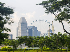 The Singapore Flyer (tord75) Tags: 2016 singapore singaporeflyer flyer ferriswheel olympus