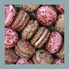 macarons (baladeson) Tags: macarons nourriture biscuits cadre formatcarré food border square