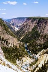 The grand canyon of Yellowstone (kc_hoang) Tags: yellowstone grandcanyon tamminhphotography travelplanet worldwidelandscapes