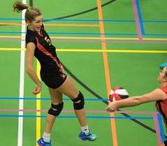 1B260535 (roel.ubels) Tags: vv utrecht eurosped galgewaard volleybal volleyball 18 finale nationale beker