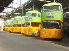 2015-08-02 Glasgow City Transport Leylands (Western Bonker) Tags: city bus glasgow transport l wee daimler leyland pds mueum bridgeton atlantean