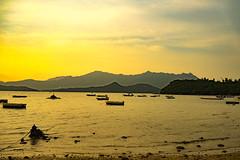 Pat Sin Leng (Kai-Ming :-))) Tags: reflection yellow hongkong golden boat sony waterscape patsinleng kaiming wukaisha ilce7m2