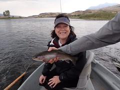 Yellowstone Rainbow (FirstCastFly) Tags: fishing montana yellowstone flyfishing trout yellowstonepark catchandrelease dryfly flyfishingjunkie firstcastoutfitters