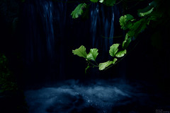 The Hidden Place (Explored) (Fredrik Lindedal) Tags: water waterfall leaf moss nikon sweden hidden harmony sverige