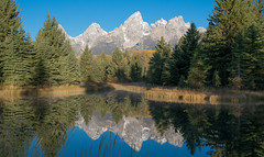 Glassy (stuck429) Tags: trees mountains wet reflections outdoor grandtetonnationalpark