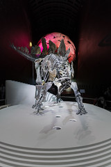 Stegosaurus skeleton, Natural History Museum (godrick) Tags: uk england london skeleton stegosaurus naturalhistorymuseum southkensington gbr stenos