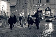 Cabs (Mucahit Cetin) Tags: vienna wien blackandwhite bw horse austria sterreich coach cab taxi cobblestone hansom hansomcab innerestadt michaelerplatz cafegriensteidl