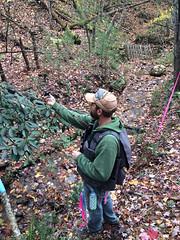 Matt paints all the surveyed boundary lines